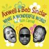 What a Wonderful World (Gold Ryan & Tapesh Instrumental) [feat. Ron Carroll]
