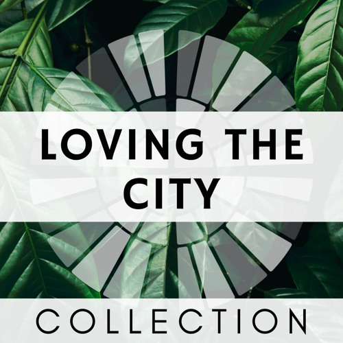 LOVING THE CITY   Collection