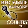 Thank You Baby (In the Style of Shania Twain) [Karaoke Version]