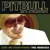 Give Me Everything (Alvaro Remix) [feat. Ne-Yo, Afrojack & Nayer]