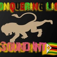 More Entertaiment Rdm Mixed Conquering Lion Snd ZW