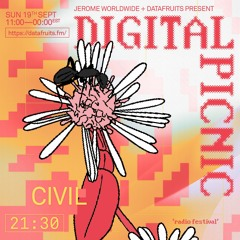 JEROME WORLDWIDE DIGITAL PICNIC - civil