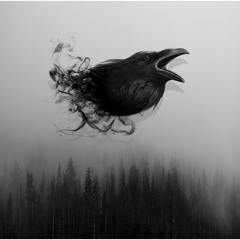 [FREE] Fast Aggressive 808 Type Beat ''Crow''   Dark Trap Beat
