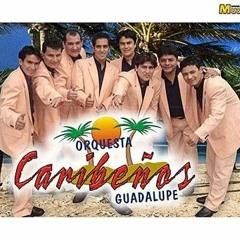 Caribeños de Guadalupe-Te necesito