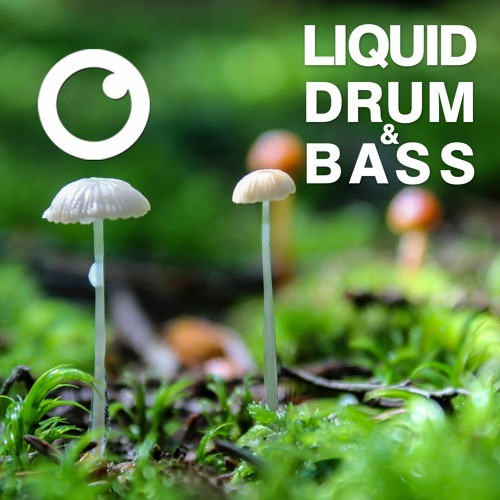 Download Dreazz - Liquid Drum and Bass Sessions #36 [December 2020] mp3