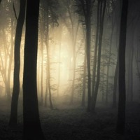 COD3KNACK3R - Dark Lights
