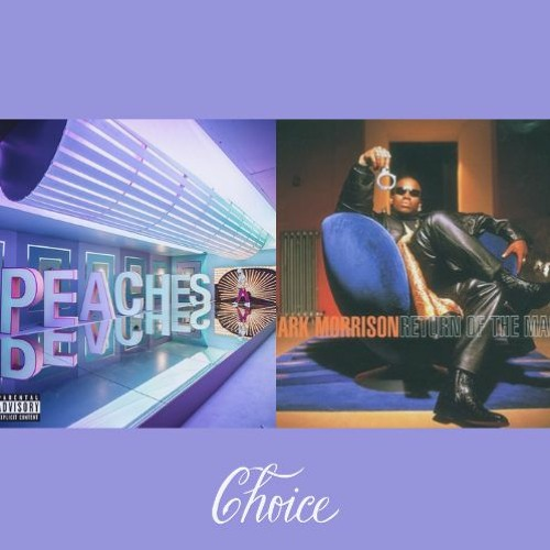Return of the Peaches (Choice Cut / DJ Serg Sniper Blend)