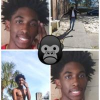 Gorilla Gang (still trappin remix)