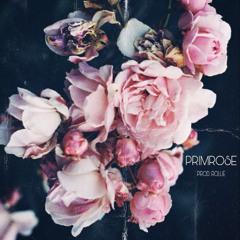 PRIMROSE (PROD. ROLLIE)