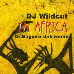 DJ Wildcut - At Began In Africa (Dr.Baguvix Dnb Remix)