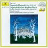 Hungarian Rhapsody No.4 In D Minor, S.359 No.4 (Corresponds Piano Version No. 12 In C Sharp Minor)