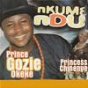 Nkume Ndu, Pt. 1 (feat. Princess Chinenye)