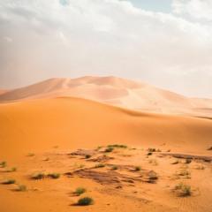 Like a Great Desert