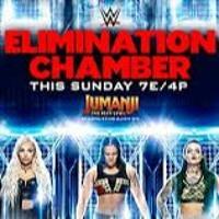 Dr. Kavarga Podcast, Episode 2276: WWE Elimination Chamber 2020 Review Artwork