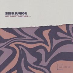 Sebb Junior - You Want My Love (Original Mix)