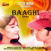 Download Tere Ishq Mein Baaghi (Female Version) Mp3
