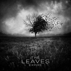 The Leaves Expire (Preview)