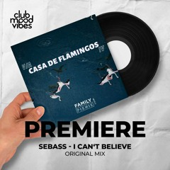 PREMIERE: SEBASS ─ I Can't Believe (Original Mix) [Family Piknik]