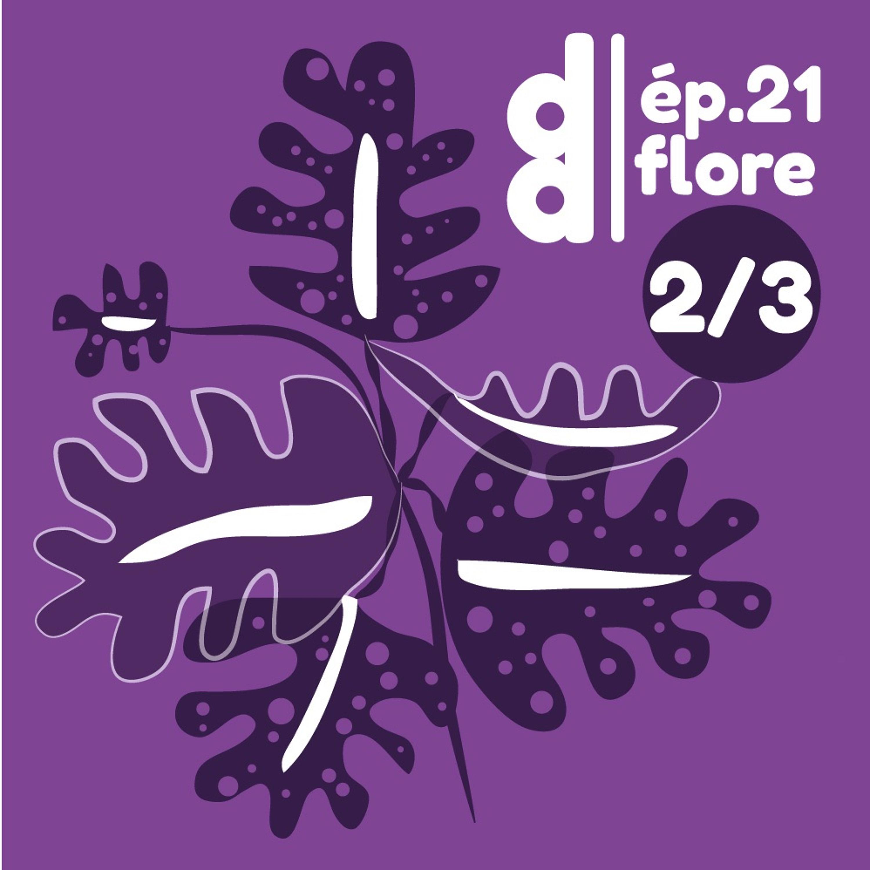 """DESSIN DESSEIN // EP21 Flore - Partie 2 : Rose Ekwé, la """"textilienne"""" qui tisse l'algue."""