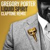 Liquid Spirit (Claptone Remix / Full Vocal Version)