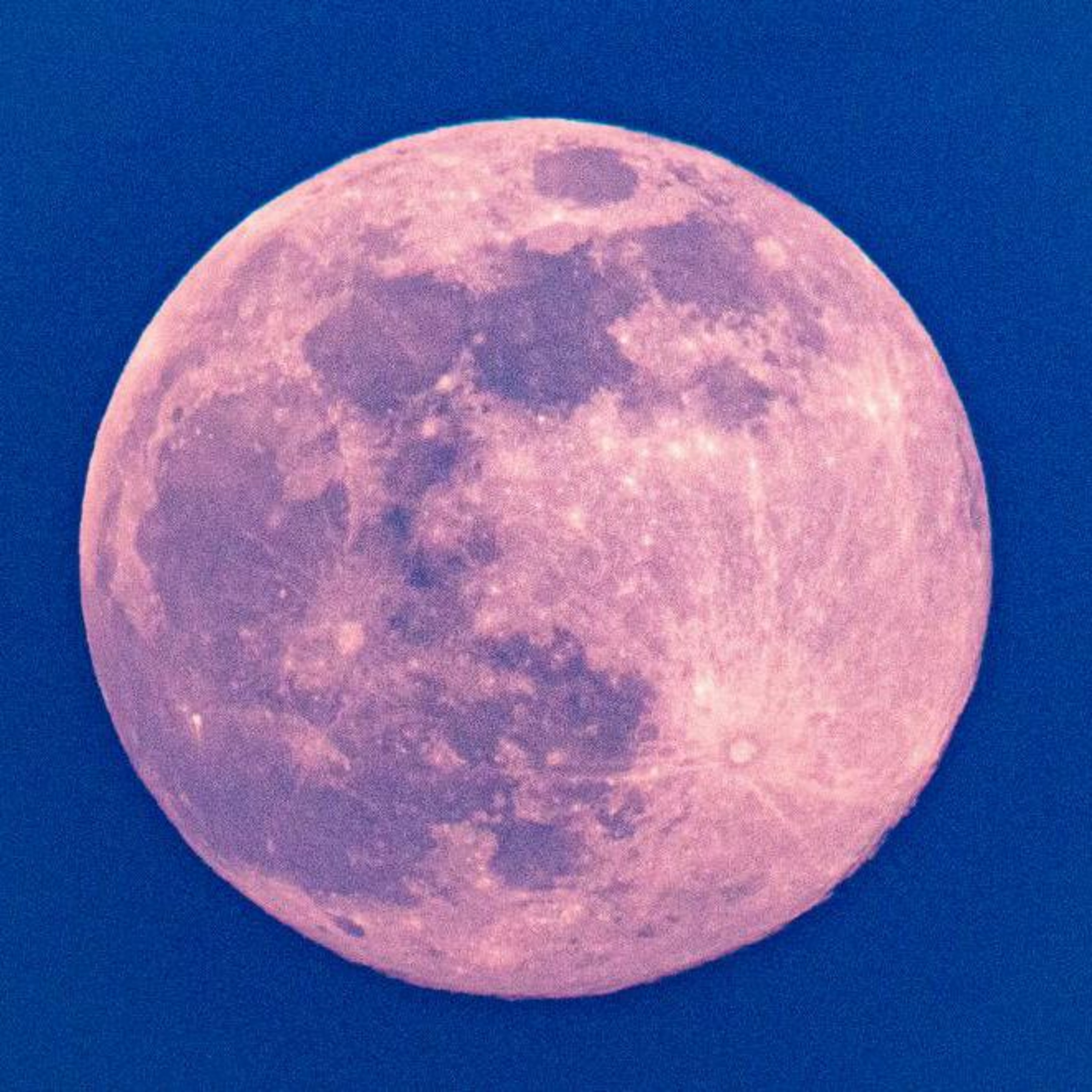 6/21/21 - The Rose Moon