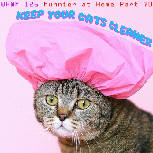 We Heard We're Funny: Keep Your Cats Cleaner (Funnier at Home Part 70)