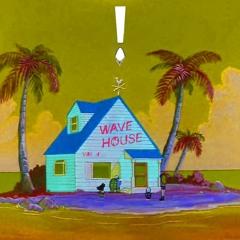 Wave House Vol. 4