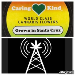 Caring Kind with Stony & Dom Diesel 04/09/21