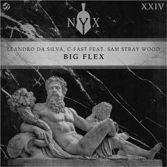 Leandro Da Silva, C-Fast ft. Sam Stray Wood - Big Flex