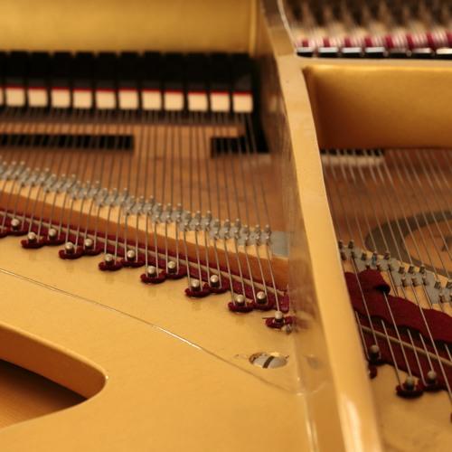 Quasar E Akkordeon & Klavier