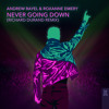 Download Andrew Rayel & Roxanne Emery - Never Going Down (Richard Durand Remix) Mp3