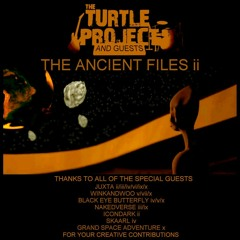 The Eleventh File - The Turtle Project - Guest Vocals By winkandwoo