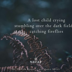 Moebius Void - Catching Fireflies  Over Dark Fields (Naviar Haiku373)