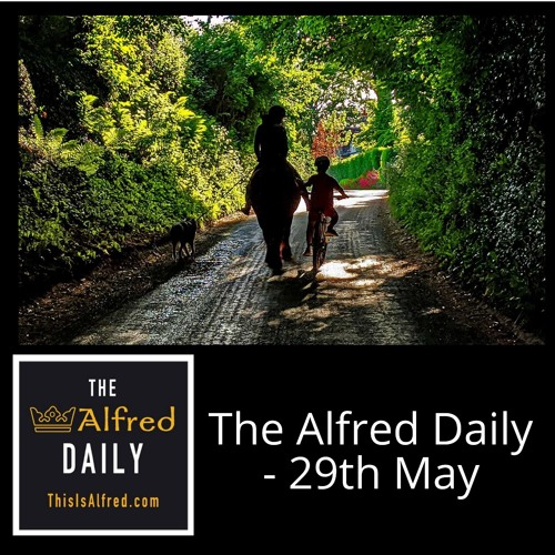 The Alfred Daily - 29th May
