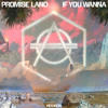 Download Promise Land - If You Wanna Mp3