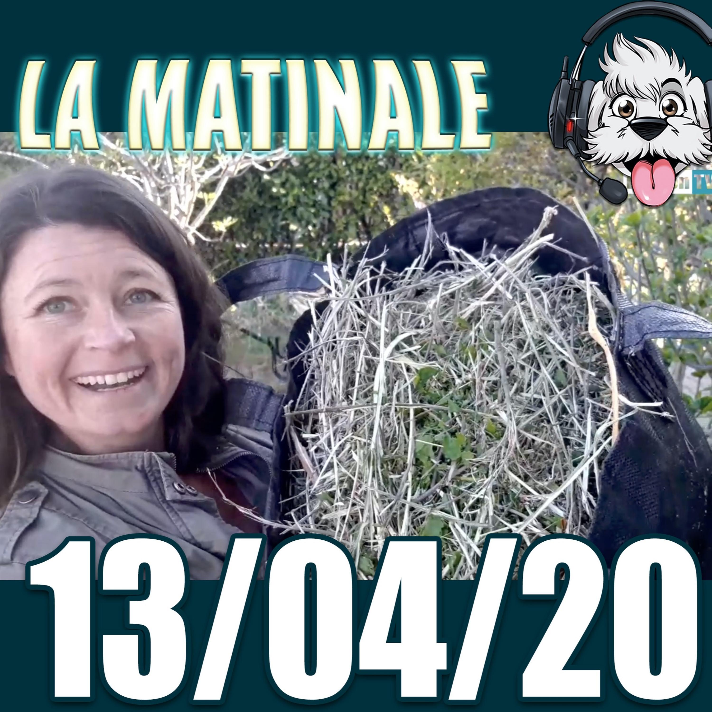 Paysagiste Breton et avoir des patates sans les planter ?? Matinale du 13 avril 2020 radio bichon