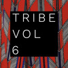 Download Tribe Vol 6 Mp3