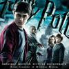 Harry & Hermione (