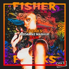Fisher vs. Rihanna - Freaks vs. S&M (WeDamnz Mashup)