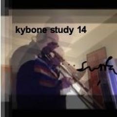 Kybone Study 14