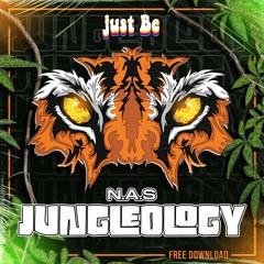 N.A.S  - JUNGLEOLOGY(FREE DOWNLOAD)