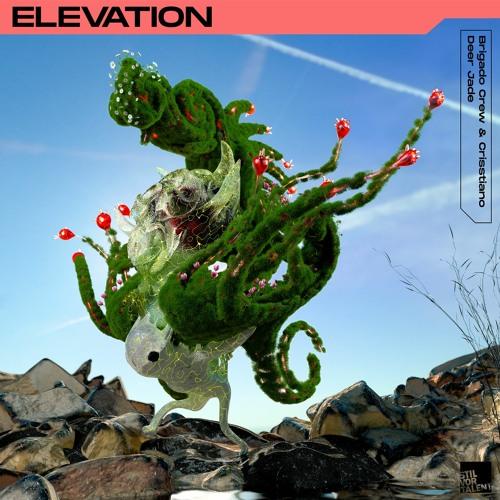 SVT278 - Brigado Crew, Deer Jade - Elevation