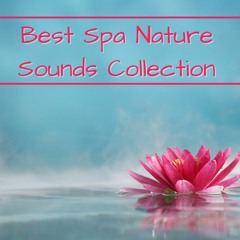 Best Spa Nature Sounds Collection
