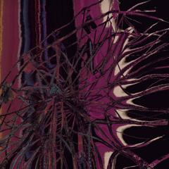 lavenderlullaby