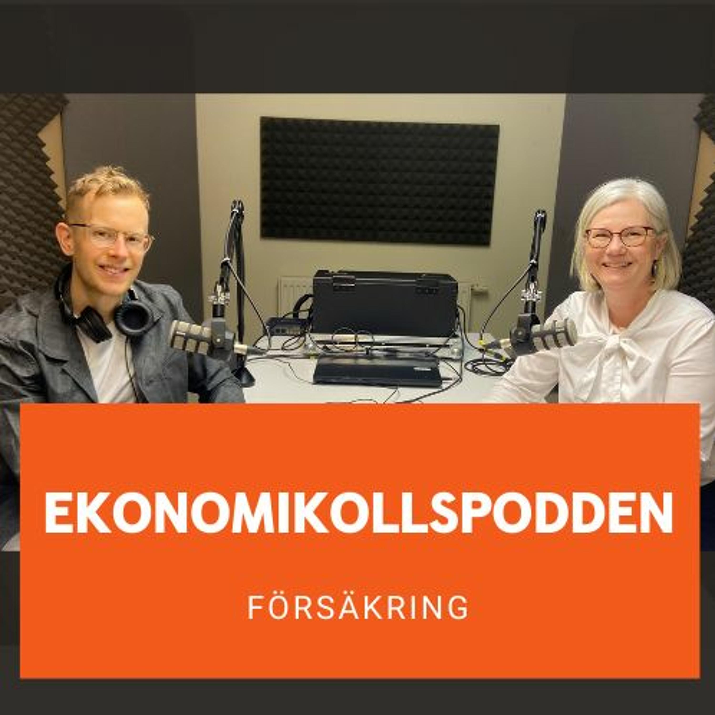 Försäkring - Vad & Varför med Ann Hansson-Böe