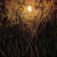 🌧 Night Rain Sounds for Sleeping and Relaxing   David Keats