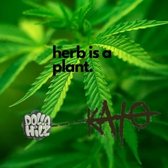 Irie & Fiery Episode 7: Herb is a Plant ft. kAtO, hosted by Dolla Hilz