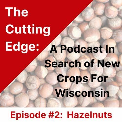 Cutting Edge Episode #2: Hazelnuts