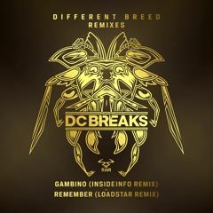 Remember (Loadstar Remix)