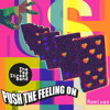 Push The Feeling On (Kooky Remix)